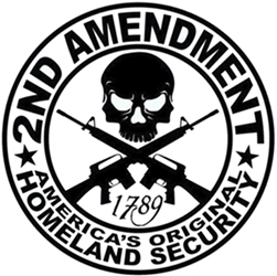 2nd Amendment Sticker Original Homeland Security